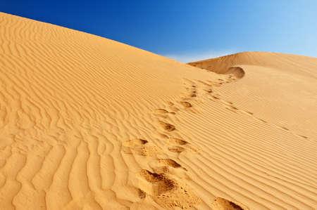 desert footprint: Beautiful sand dunes in the Sahara desert, Tunisia