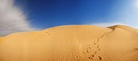 high desert: Beautiful sand dunes in the Sahara desert, Tunisia