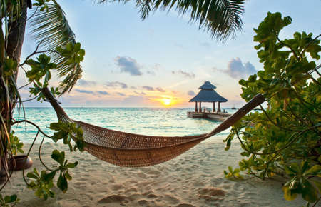 Empty hammock in the tropical beach in the Maldives at sunset photo