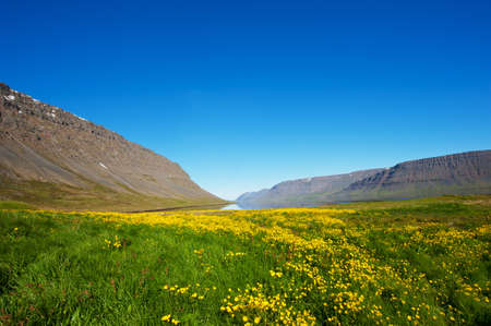 Mighty fjords rise from the sea in the Westfjords Peninsula, northwestern Iceland photo
