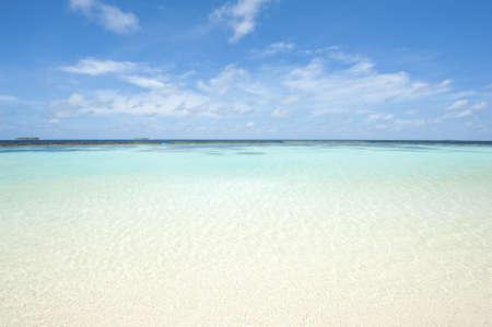 Beautiful crystal clear Maldivian sea with a beach photo