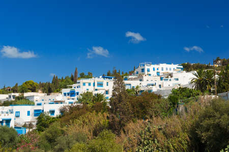 Old Tunisian town Sidi Bou Said is today a luxury quarter of the capital Tunis. Sidi Bou Said is known for blue and white colors. Many famous films were taken here. Stock Photo - 17162038