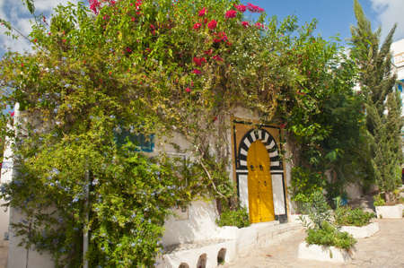 Traditional yellow door surrounded by hibiscus flowers at beautiful Tunisian town Sidi Bou Said Stock Photo - 17162045