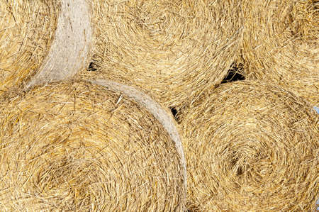 Detail of five straw bales - agricultural background photo