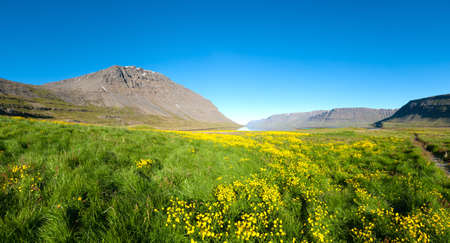 west coast: Mighty fjords rise from the sea in the Westfjords Peninsula, northwestern Iceland
