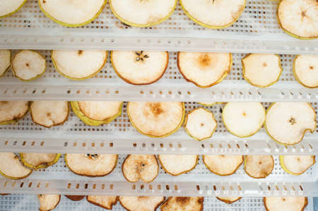 dehydrated: Detailed photo of home made dehydrated apples and pears