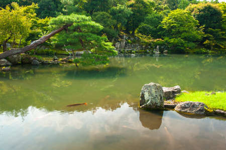 meditaion: Zen Garden with lotus leaves and a pond in Kyoto, Japan