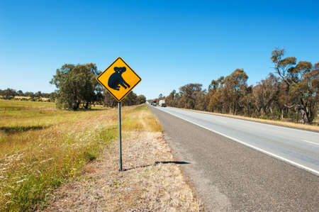 Koala warning sign near the Australian highway photo