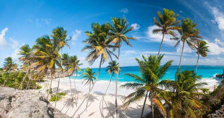 Bottom Bay est l'une des plus belles plages de l'île de la Barbade Il est un paradis tropical avec des palmiers qui pèsent sur la mer turquoise large panoramique