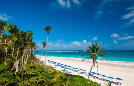 Crane Beach è una delle più belle spiagge dell'isola caraibica di Barbados Si tratta di un paradiso tropicale con palme appesa sopra il mare turchese Archivio Fotografico - 25827302