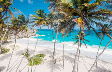 Bottom Bay is one of the most beautiful beaches on the Caribbean island of Barbados  It is a tropical paradise with palms hanging over turquoise sea photo