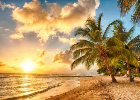 Hermosa puesta de sol sobre el mar con vistas a palmeras en la playa de arena blanca en una isla caribeña de Barbados