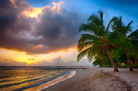 unspoilt: Beautiful sunset over the sea with a view at palms on the white beach on a Caribbean island of Barbados Stock Photo