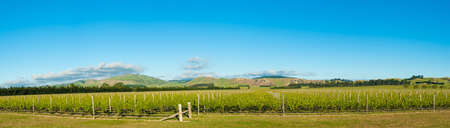 Panoramic photo of winery from South Island of New Zealand photo