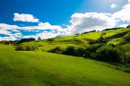 황혼, 캔터베리 남부 뉴질랜드의 아름 다운 녹색 언덕 스톡 콘텐츠