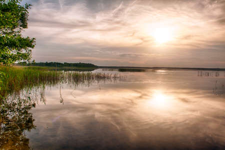 tree disc: Beautiful vivid sunset over the lake Kanieris, Latvia. HDR