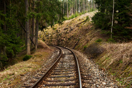forest railway: Single railway is leading through the forest Stock Photo
