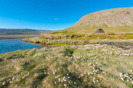 mighty: Wild camping under the mighty fjords in the Iceland
