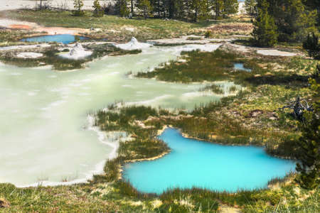 chromatic colour: Deatiled photo of vivid thermal pools from above. West Thumb Basin. Yellowstone National Park, Wyoming, USA