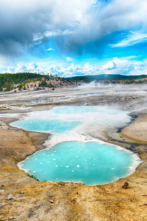 hydrothermal: Turquoise pools in Norris Geyser Basin, Yellowstone National Park, USA