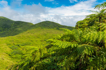 guadeloupe: View from Soufriere volcano, the highest mountain in Guadeloupe, French department in Caribbean