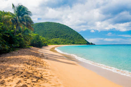 Great beach of Grand Anse near village of Deshaies, Guadeloupe, Caribbean Imagens - 55378998