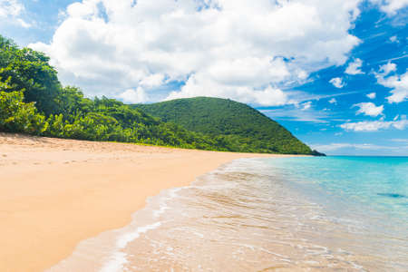 perle: Great beach of Grand Anse near village of Deshaies, Guadeloupe, Caribbean