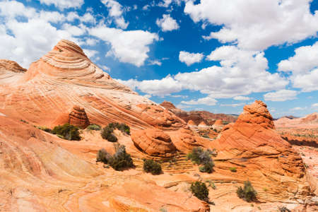 paria: Vivid sandstone formation in Coyote Buttes North. These formations could be seen in Paria Canyon-Vermilion Cliffs Wilderness between the towns of Kanab, Utah and Page, Arizona. USA