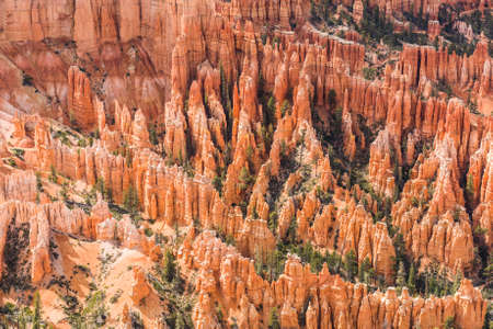 Amphitheater seen from Inspiration Point in the late afternoon, Bryce Canyon National Park, Utah, USA