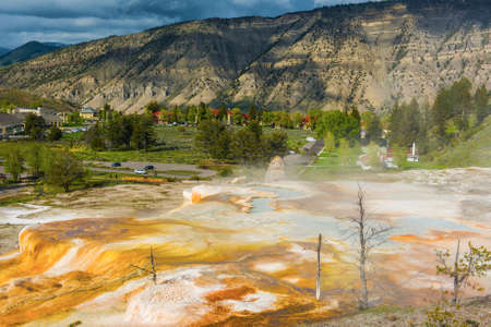 thermal spring: Vivid Canary Spring area at thermal terraces rock formations in Mammoth Hot Springs, Yellowstone National Park. USA