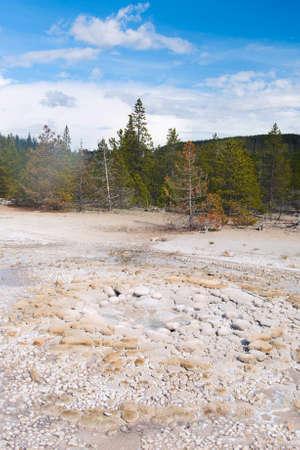 erupt: Vixen Geyser is about to erupt. Norris Geyser Basin, Yellowstone National Park, USA