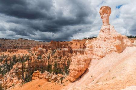 hoodoos: Hoodoos in Bryce Canyon National Park, Utah, USA