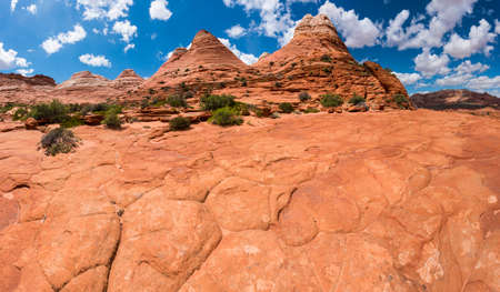 paria canyon: Vivid sandstone formation in Coyote Buttes North. These formations could be seen in Paria Canyon-Vermilion Cliffs Wilderness between the towns of Kanab, Utah and Page, Arizona. USA. Panorama