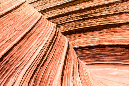 paria canyon: The Wave is an awesome vivid swirling petrified dune sandstone formation in Coyote Buttes North. It could be seen in Paria Canyon-Vermilion Cliffs Wilderness, Arizona. USA Stock Photo
