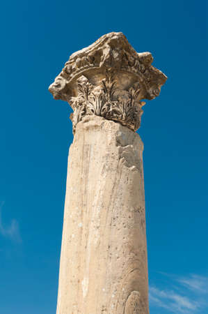 Column in the ruins of ancient Greek city of Ephesus Editorial