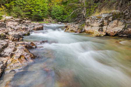 Beautiful long exposure picture of brook on a trail in Tierra del Fuego National Park, Argentina