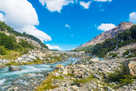 Beautiful swift brook on the track to Glaciar Piedras Blancas in Los Glaciares National park, Argentina