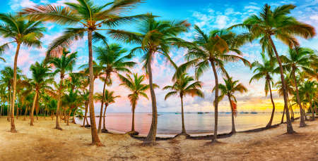 Vivid sunset over Anse Champagne beach in Saint Francois, Guadeloupe, Caribbean. Wide panoramic photo