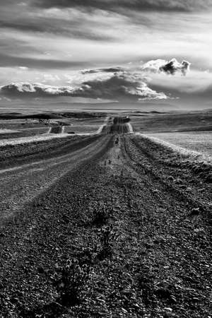 Road across the hills and plains of Patagonia, Argentina. Black and white 写真素材
