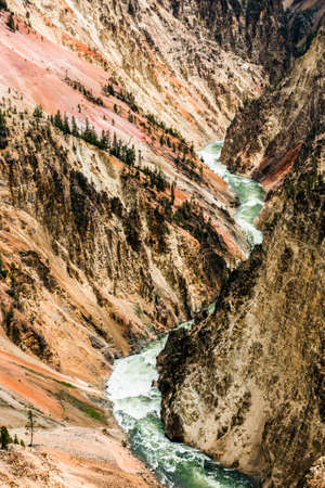 View at a vivid Grand Canyon of the Yellowstone and Yellowstone river seen from Artist Point. Yellowstone National Park, Wyoming, USA 스톡 콘텐츠