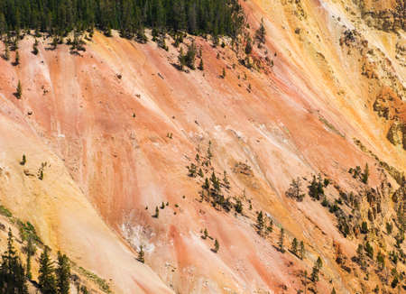 Detail of a vivid Grand Canyon of the Yellowstone seen from Artist Point. Yellowstone National Park, Wyoming, USA