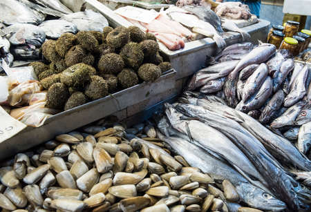 Various fresh fish and sea food in the Central market of Santiago de Chile