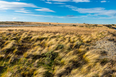 Wind and grass everywhere - that is so typical for plains in Chilean Patagonia.