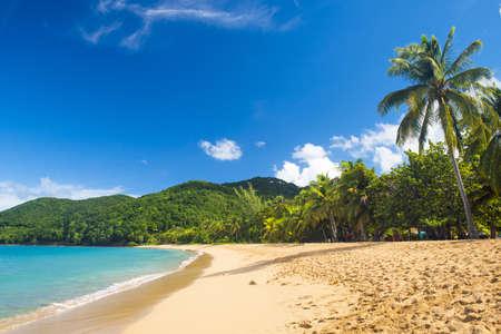 Great beach of Grand Anse near village of Deshaies, Guadeloupe, Caribbean Stock Photo
