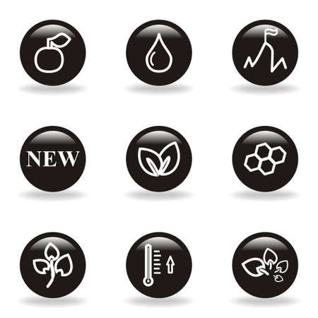 Set of 9 glossy web icons  set 19   Black circle with reflection and shadow  Illustration