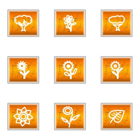 Set of 9 glossy web icons (set 18). Illustration