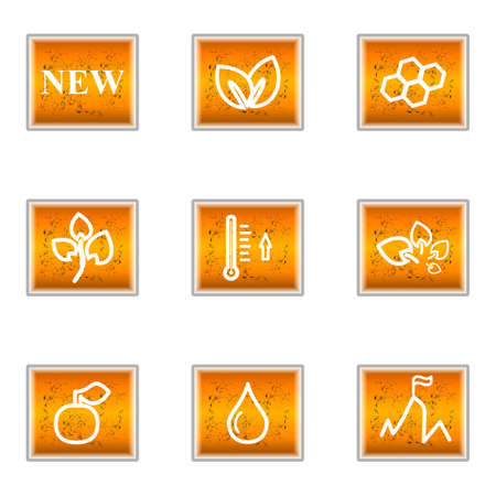 Set of 9 glossy web icons (set 19). Stock Vector - 16241265