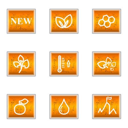 Set of 9 glossy web icons (set 19). Illustration