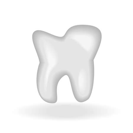 Vector illustration of white tooth with reflection.