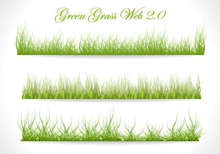 Grass. Three Template on White Background. Vector Illustration.  Stock Vector - 16917024